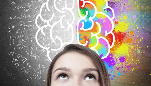 El cerebro tiene una maduración muy larga