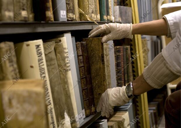 Reportaje del recuento anual de los fondos de la Biblioteca ...