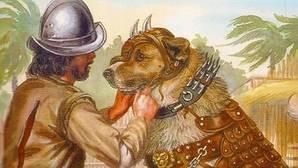 Un conquistador español arma a su perro