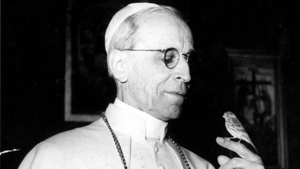 El Papa mirando un pájaro, que sostiene en la mano.