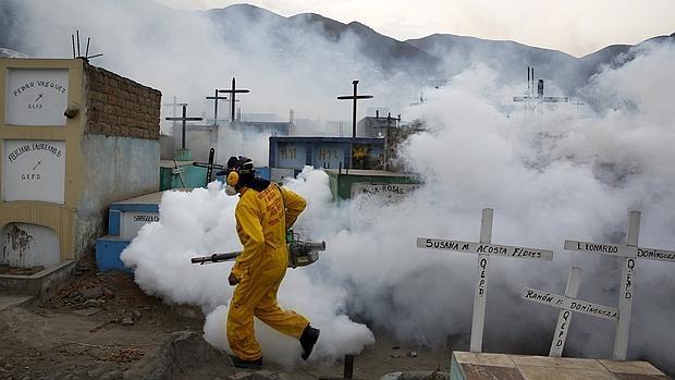 El pánico a la microcefalia convierte al zika en la nueva amenaza mundial