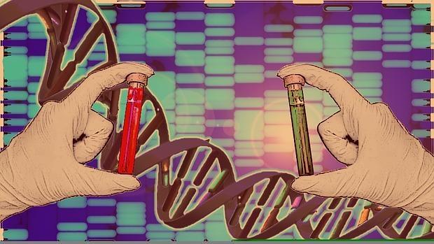 Kuwait exigirá el ADN a residentes y turistas para entrar al país