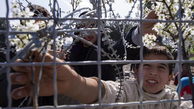 Aumentan los ataques y las trabas legales a los refugiados en la Unión Europea