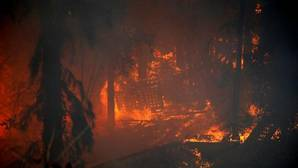 Evacuaciones masivas en el norte de Israel por los incendios