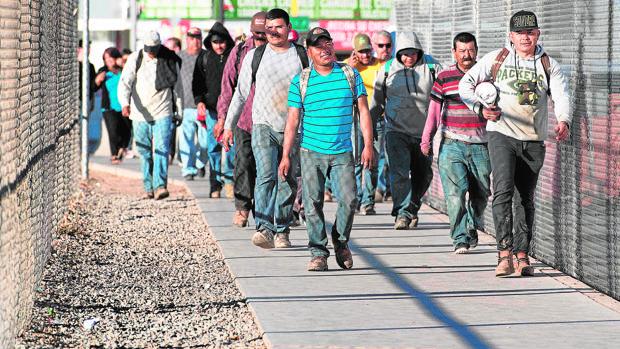 Temporeros regresan a México desde el puesto fronterizo de San Luis, en Arizona