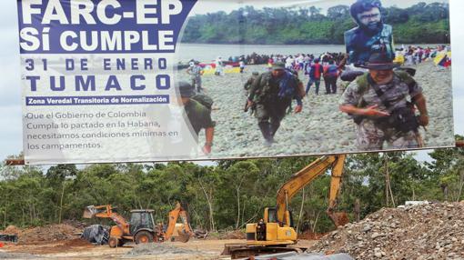 Trabajos para adecuar un campamento de las FARC en la zona veredal de La Playa, en Tumaco (Nariño)