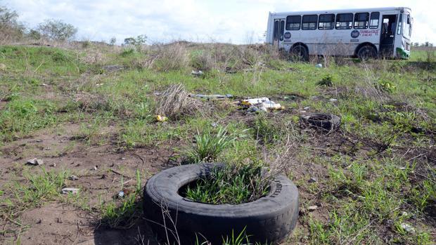 Encuentran 250 cráneos en Veracruz, el cementerio clandestino más grande de México