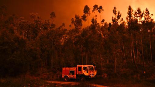 Servicios de bomberos hacen frente al incendio