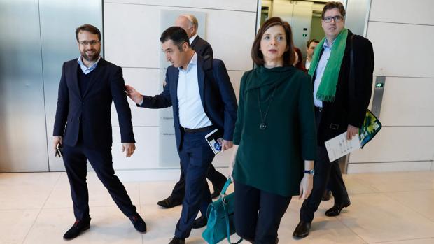 Los Verdes ceden en la «negociación Jamaica» para formar gobierno en Alemania ante el empuje del AFD