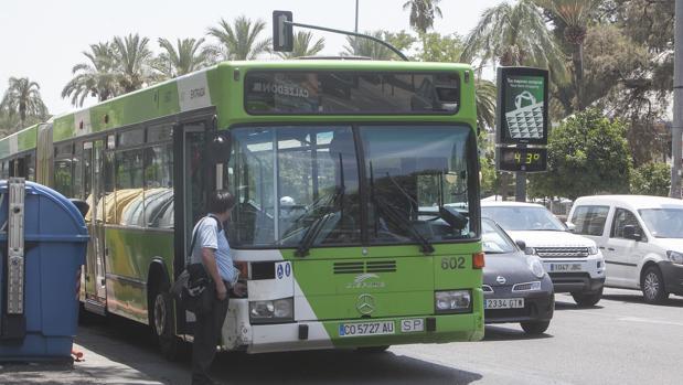 Imagen de archivo de un autobus en España