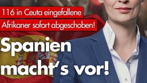 Los ultras alemanes de AfD se alinean con Pedro Sánchez en política migratoria