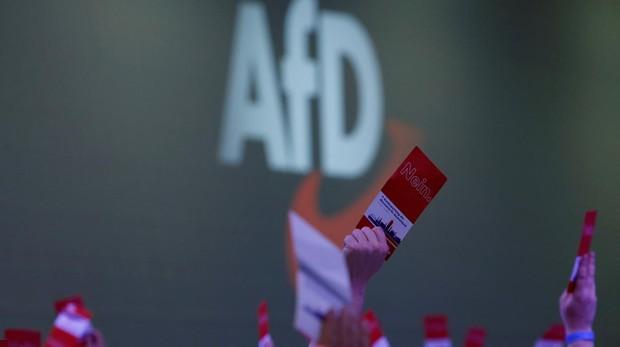 AfD, el segundo partido a escala federal en las encuestas