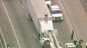 Una mujer desnuda bailando sobre un camión provoca un monumental atasco