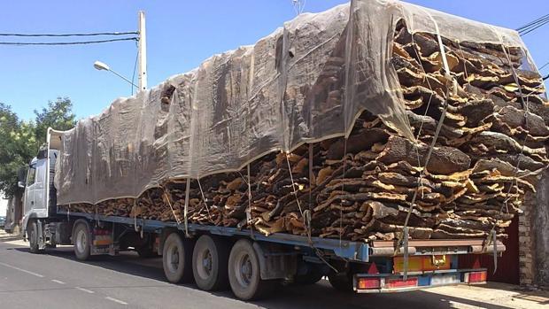 el 22% de los camiones que posicionan mal la cargapueden llegar a