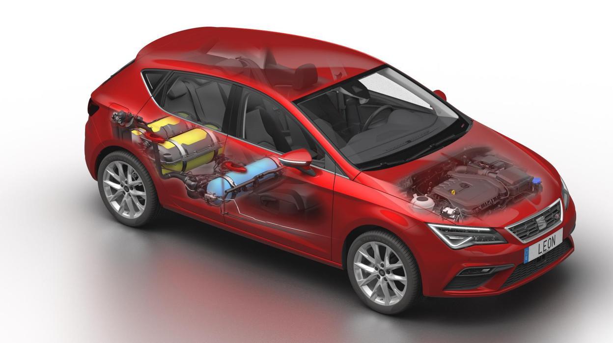 Nuevo León TGI EVO: el compacto de Seat más eficiente
