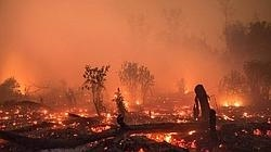 Incendios Indonesia