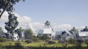 Crean el primer pueblo ecológico capaz de producir luz y reciclar su basura
