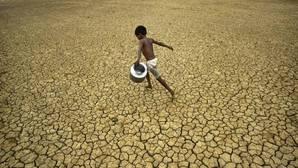 «Para alcanzar hambre cero, tambiém hay que lograr el trabajo infantil cero», manifiesta José Graziano da Silva
