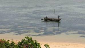 Calentamiento oceánico: «El mayor desafío oculto al que se enfrenta esta generación»