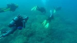 Mantener vivos los mares con cada inmersión