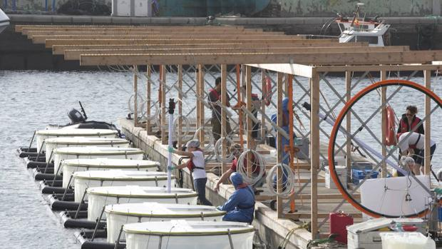 La semana pasada Geomar instaló en el puerto de Taliarte (Gran Canaria) ocho contenedores de agua marina flotantes