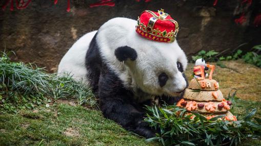 Cumpleaños de Basi
