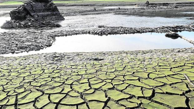 De los 16 veranos extremadamente secos identificados en las tres centurias anteriores en España, seis corresponden al periodo entre 2003 y 2013