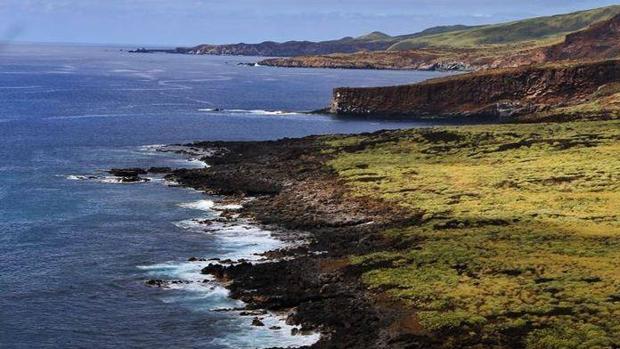 El archipiélago Revillagigedo se suele llamar «Las Galápagos de Norteamérica»