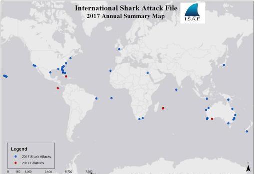 Mapa de los ataques de tiburones a personas en 2017