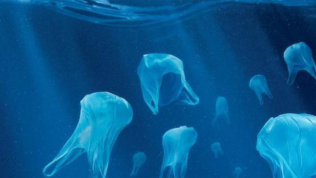 El plástico que flota en el mar libera compuestos orgánicos que estimulan el crecimiento de las bacterias