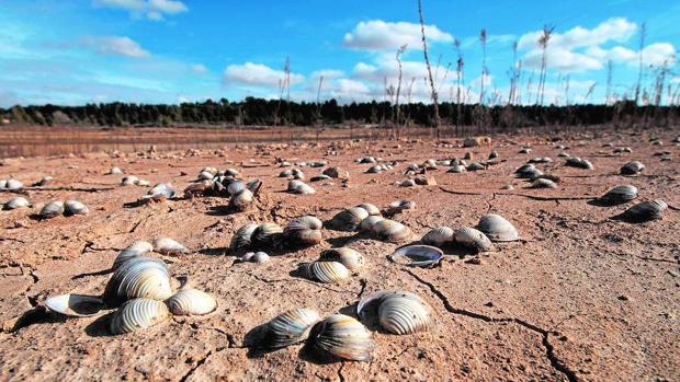 Esto es lo que les espera a los países mediterráneos si no gestionen bien el cambio climático
