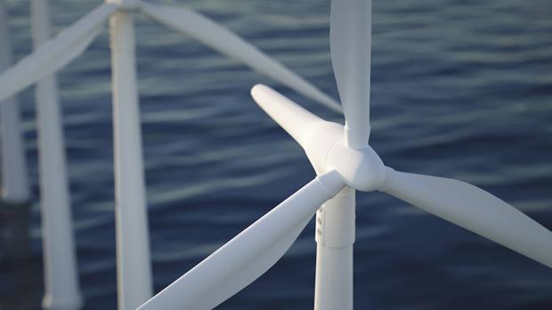 ¿Y si los parques eólicos marinos también criaran peces?