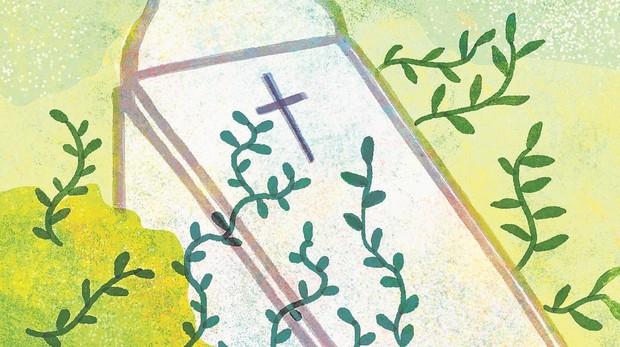 La agricultura biológica es un lujo de ricos, no una respuesta a las necesidades de los consumidores más pobres (abc.es)