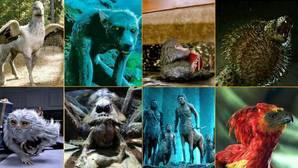 Bestiario de criaturas mágicas de «Animales fantásticos y dónde encontrarlos»