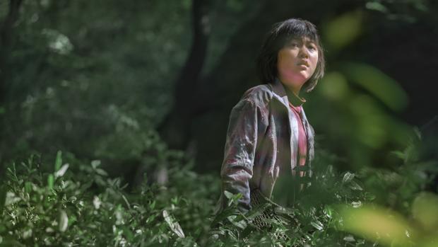Fotograma de «Okja», una de las películas de Netflix nominadas a la Palma de Oro