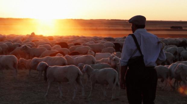 El protagonista de «El pastor»