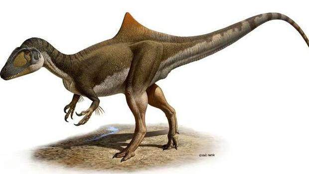«Pepito», un Concavenator Corcovatus que paseó por Las Hoyas (Cuenca) hace 125 millones de años