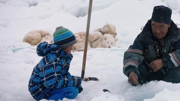 Imagen de «Profesor en Groenlandia»