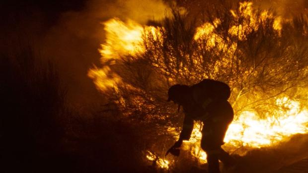 Fotograma de «O que arde»