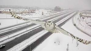 Imagen extraida del Facebook del ministro de Transportes de Quebec