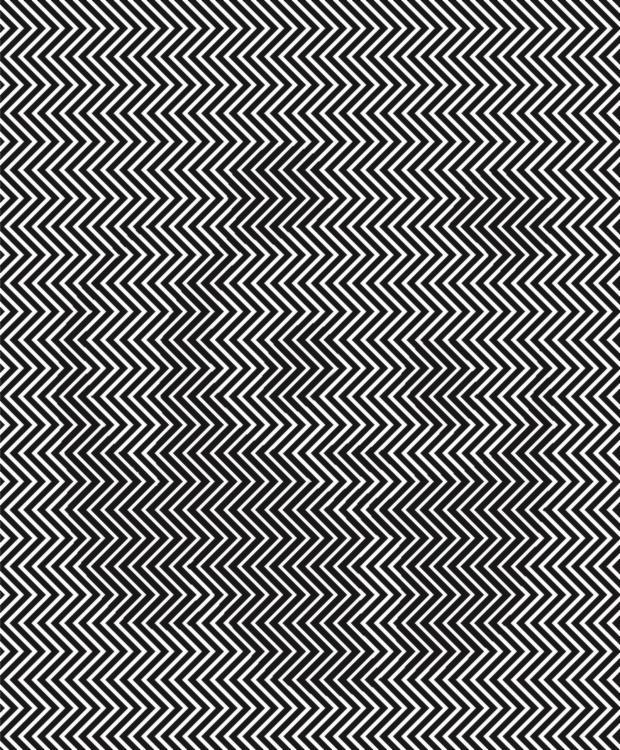 Imagen oculta