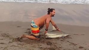 Saca a un tiburón del agua para hacerse una foto con él