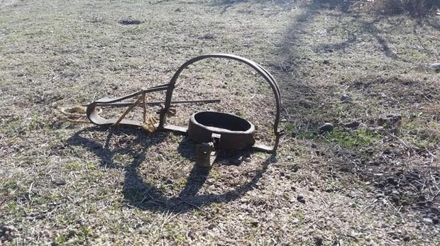 Imagen de un cepo utilizado en cacería