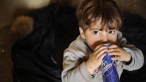 La inclusión de advertencias en las bebidas azucaradas reduciría su consumo en niños