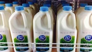 Las bebidas vegetales no contienen los mismos nutrientes que la leche de vaca