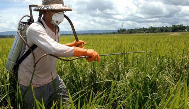Ultimos Avances en Ciencia y Salud - Página 33 Pesticides-k2aF--620x349@abc