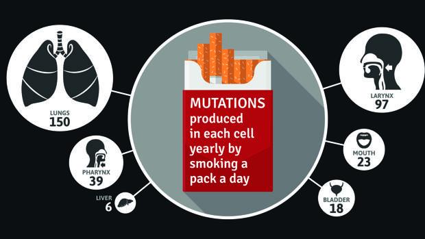 El tabaco se asocia con un mayor riesgo de17 tipos de cáncer
