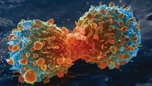 Más cerca de la ansiada vacuna terapéutica personalizada contra el cáncer