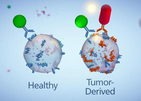 Unión de anticuerpos del chip a exosomas de una células sana y de una célula tumoral (izquierda)