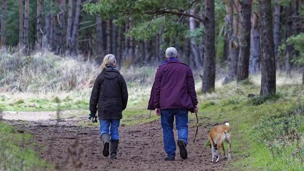 Tener un perro ayuda a los mayores a ser más activos